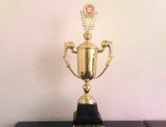 2005年度奖杯